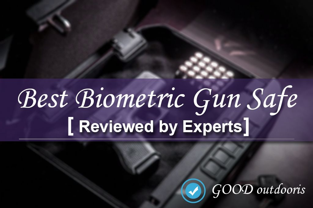 best biometric gun safe reviews